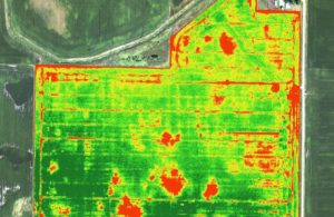 Overview of the farm using NDVI Technology
