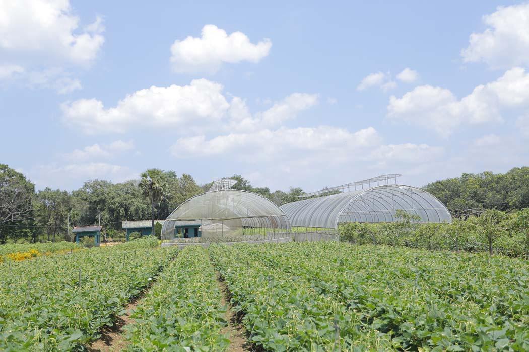 7 - High Tech Agri